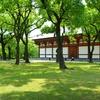 5月の東寺徘徊