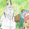 ONE PIECE(ワンピース) 775話「巨象を救え 麦わら救急大作戦!」