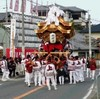 Kimono Flea Market ICHIROYA's News Letter No.667