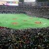 【野球】ソフトバンク対巨人戦を観戦してきました。