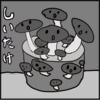 しいたけロス、ネコ(20180604_01)