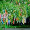 Kimono Flea Market ICHIROYA's News Letter No.783