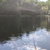 短竿、両グルテンの底釣り(2021富沢の池10)