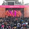 インド新年の祝いディワリ。予想以上の盛り上がりで、楽しかったです。Diwali Festival 2017 in London