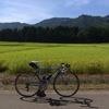 クロモリ自転車に乗り始めて一年がたった(やっぱりClarisで組んだ自転車)