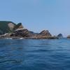 7月15日 阿曽浦、志戸本島 石鯛釣り
