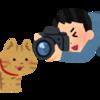 Old Cameraの話 フィルムを使うカメラのすすめ 撮影はかんたん編