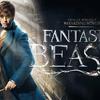 【感想】映画「ファンタスティックビーストと魔法使いの旅」が全て詰まった名作だった【ネタバレ】
