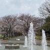 府中の森公園の桜と森乃珈琲屋と府中市美術館「与謝蕪村展」。