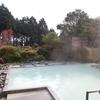 箱根湯の花温泉ホテル(現:箱根湯の花温泉プリンスホテル)