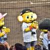 (野球) 明日は甲子園 阪神