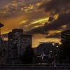 久しぶりに見た夕日が焼けた大阪ライオン橋にて