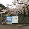 曇天の中 毛呂山の桜を見に 鎌北湖と阿諏訪の桜