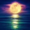 孤独と出会いの満月☆改めて気付かされた、一人ひとりとの大切な出会い