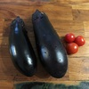 家庭菜園にて初収穫。