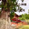 【古都奈良の世界遺産】春日大社の見どころをわかりやすく解説