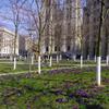 サン・ミッシェル大聖堂 ハヤブサのおうち ブリュッセル