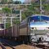 2月11日撮影 東海道線 根府川~真鶴間 ③ 貨物列車2本撮影 5097ㇾ 5060ㇾ