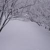 大寒波で大雪の御在所岳