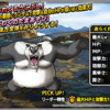 【DQMSL】「あらくれパンダ」はあれくるうこぶしでHPが低いほどダメージ大!とうこん持ちの耐久型!