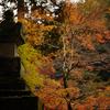 紅葉見頃の西明寺へ