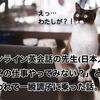 オンライン英会話の先生(日本人)に「この仕事やってみない?」と誘われて一瞬調子に乗った話。