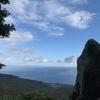 足摺岬に座する歴史ある低山・白皇山で正月早々迷った