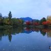 【写真複製・写真修復の専門店】札幌 秋の中島公園 晴れの状態に