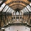大英自然史博物館展 国立博物館