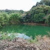オリーブ姫湖下の池溜(仮称)(千葉県南房総)