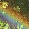 ちっちゃい虹をつくってみよう!!