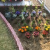 花壇とDIY