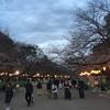 夜桜見物と摺鉢山古墳  台東区上野公園