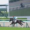 阪神芝1600m外(2歳戦)種牡馬別ランキング