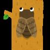 うるさいセミの鳴き声とセッションするハナシ