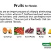 FIBROIDS DIET PLAN
