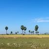 【コラム】カンボジアのシェムリアップってこんな町。