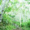 北海道車中泊の旅日記・08 羊蹄山ソロ登山