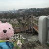 毎年恒例お花見イベント♪狭山公園大階段グリコ〜☆*:.。. o(≧▽≦)o .。.:*☆