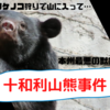 十和利山熊襲撃事件【本州最大】日本史上3番目の獣害
