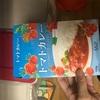 インスタントトマトカレーを食べてみた(レビュー)