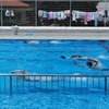 きれいなフォームで泳ぐぞ!25メートル! 5年生