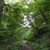 7月の野幌森林公園と川下公園