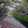 乞田川を歩く 鶴牧西公園から大栗川合流へ