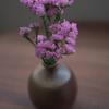 【スターチスの花の謎】身近にありながらも知らないことで溢れている