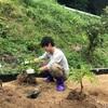 クコやナツメを植え替えました!