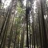 清滝峠〜京田辺〜大正池〜和束