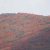 ◆9/26      紅葉の栗駒山④…展望岩頭~しろがね湿原