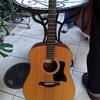 おニューのギターたち