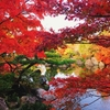 紅葉がキレイ!兵庫県・姫路の穴場スポット「好古園」